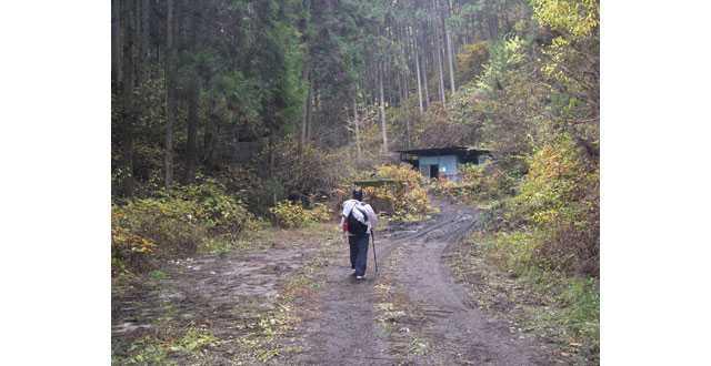 栃原金山への道3