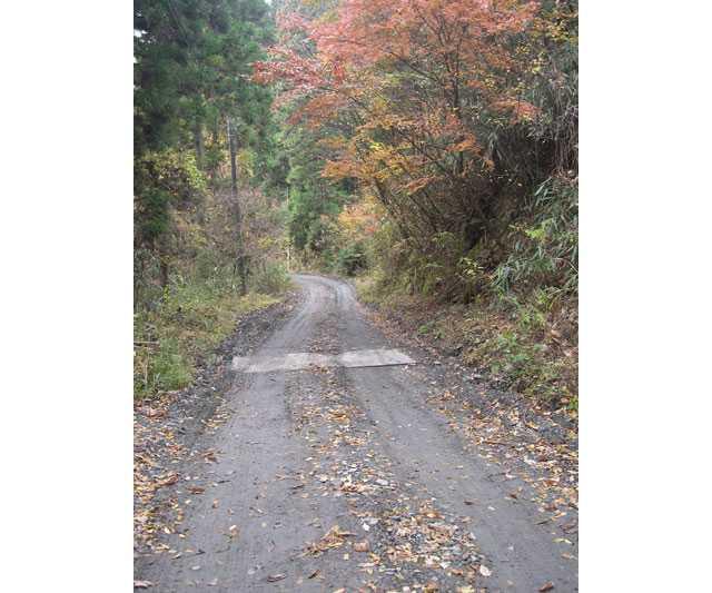 栃原金山への道