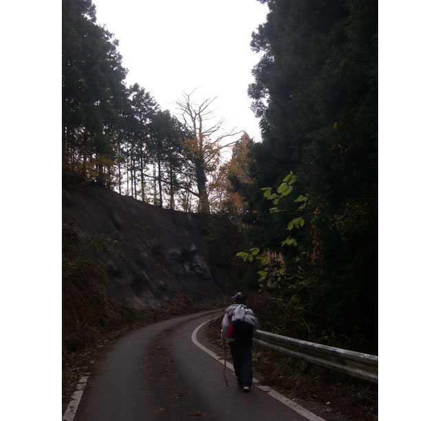 愛宕山への道2