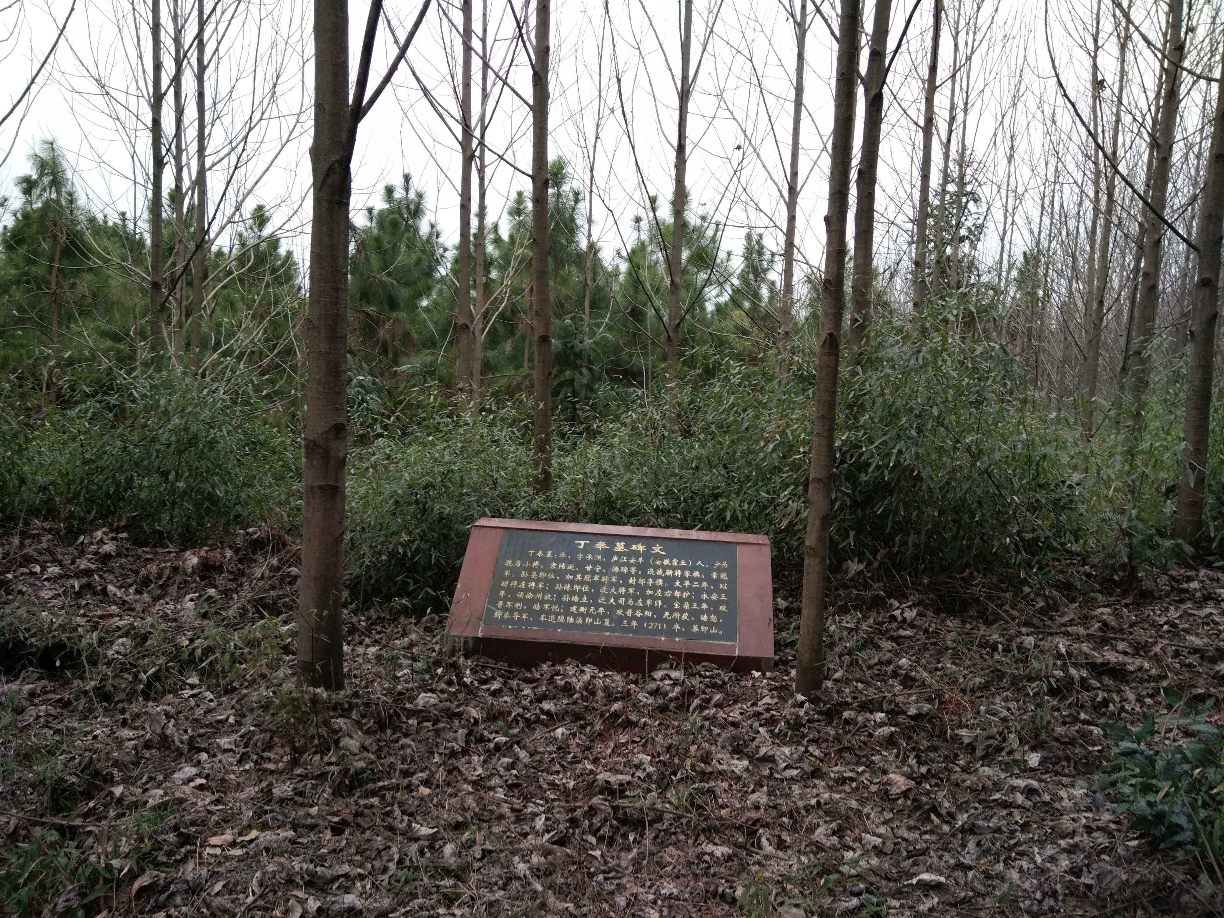 虎山郷印山の丁奉墓