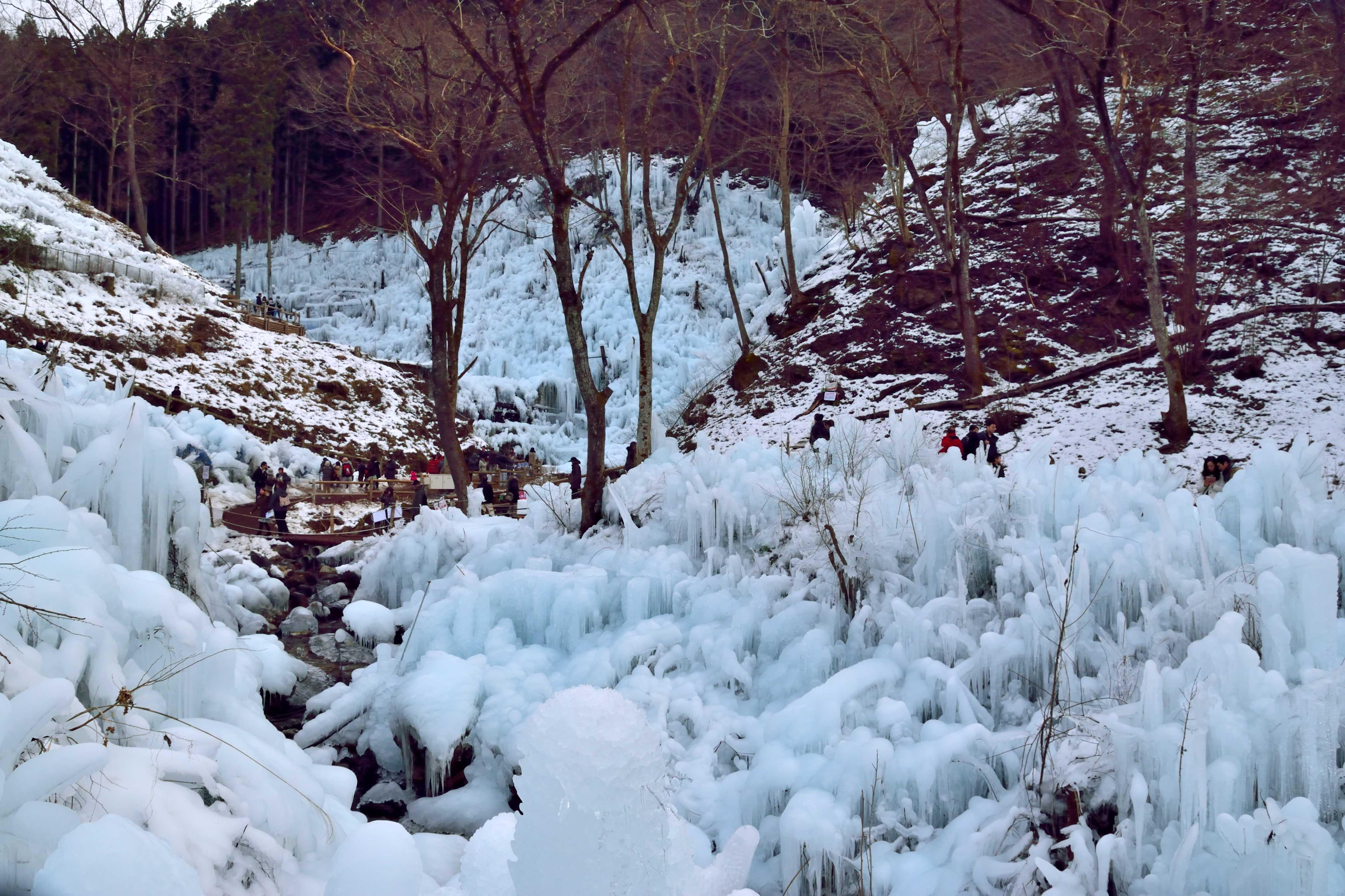 あしがくぼ樹氷