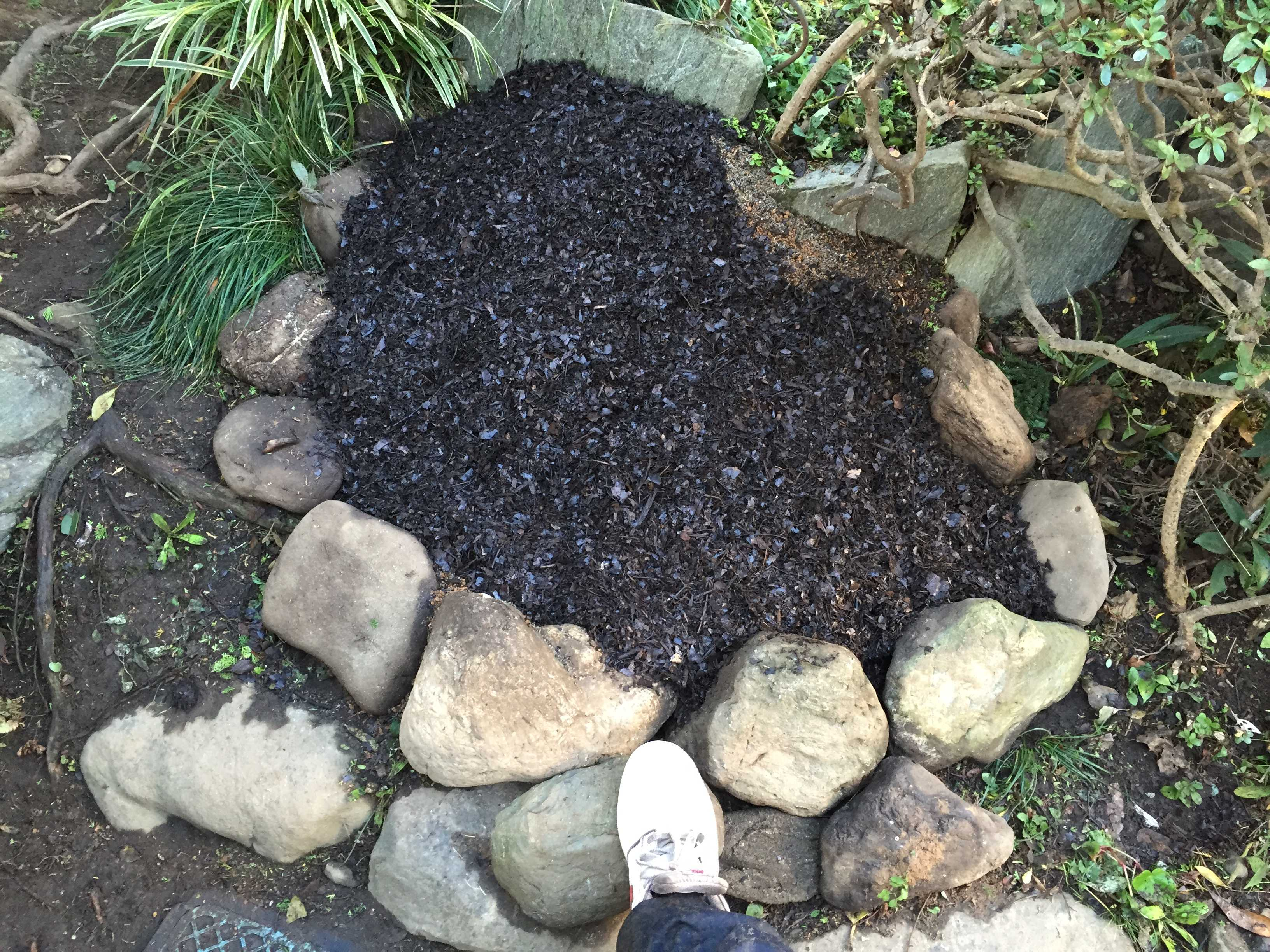 ヤマユリの球根植え付け - 植え付け場所