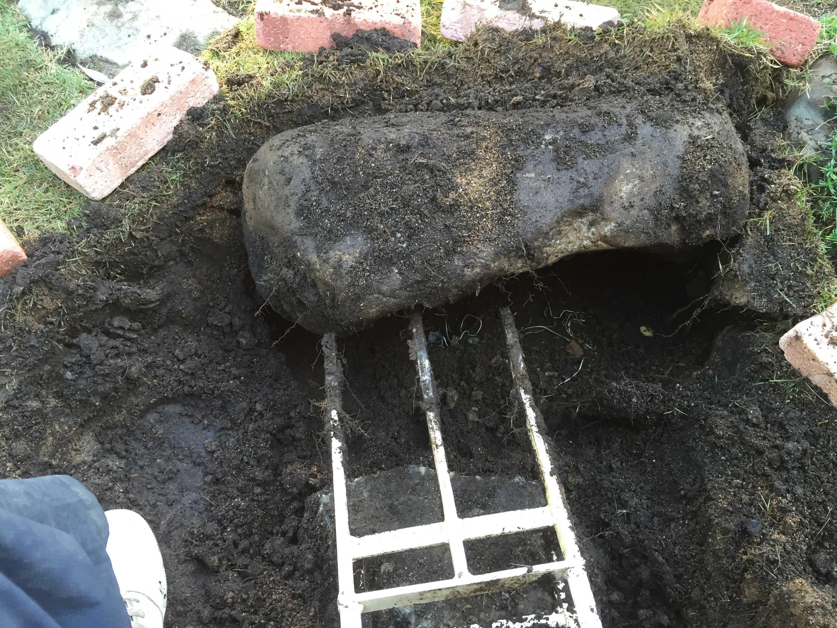 土起こしで石の掘り出し - 水仙の球根の植え方
