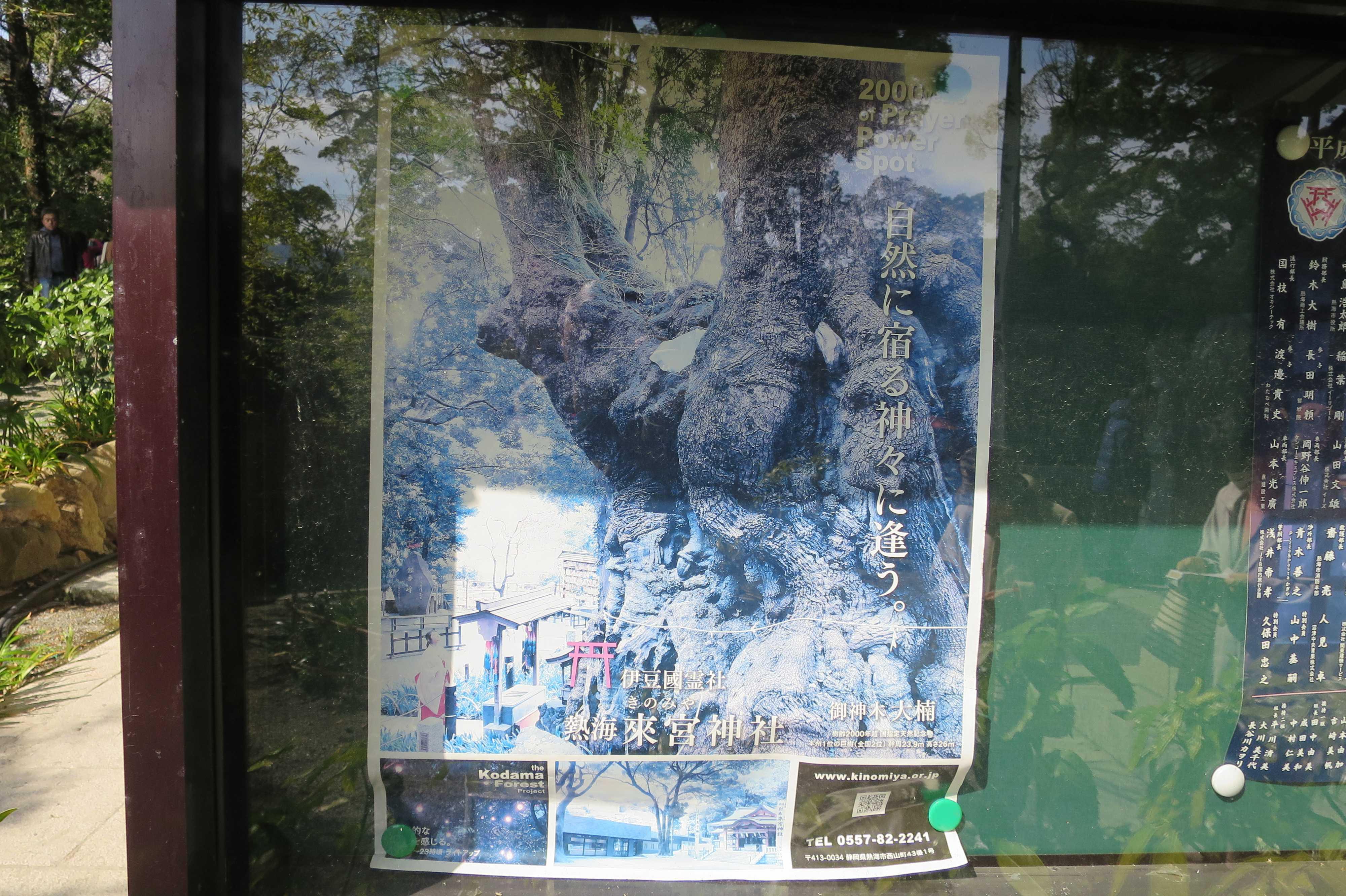 来宮神社 - 自然に宿る神々に逢う。