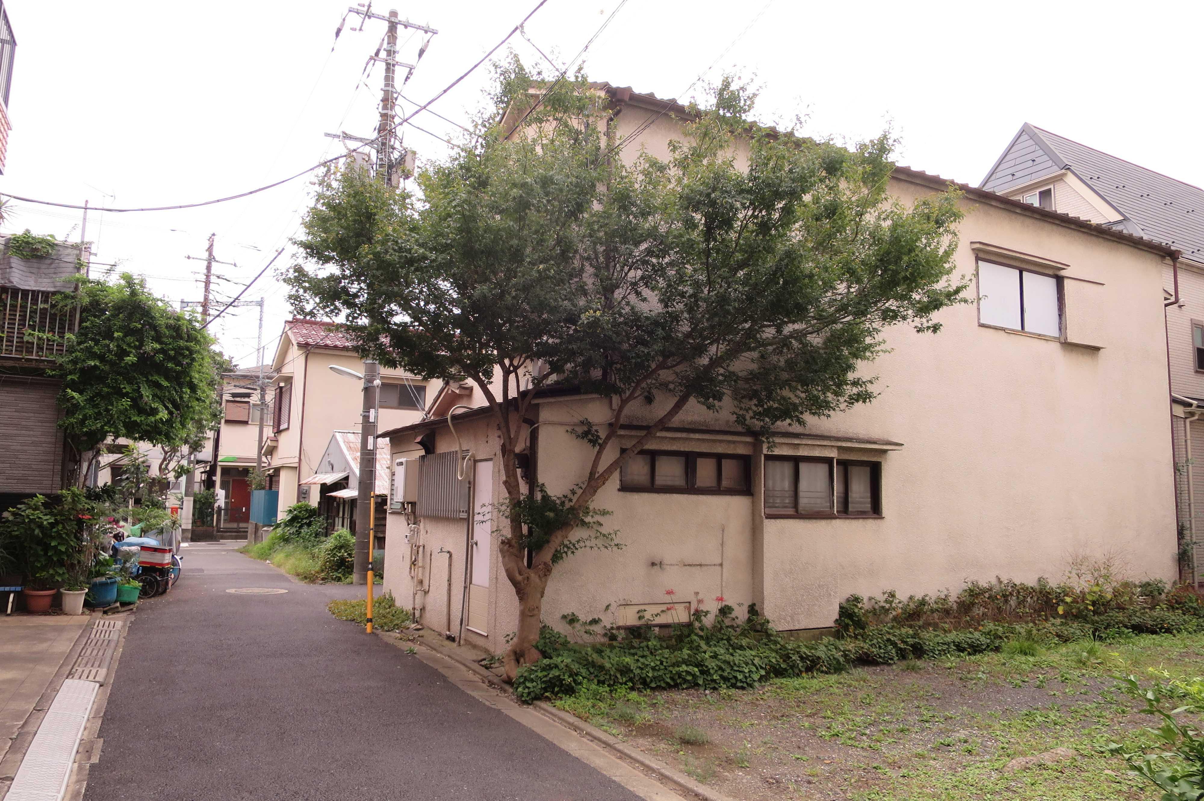 建物と樹木の共存 - 東京都品川区