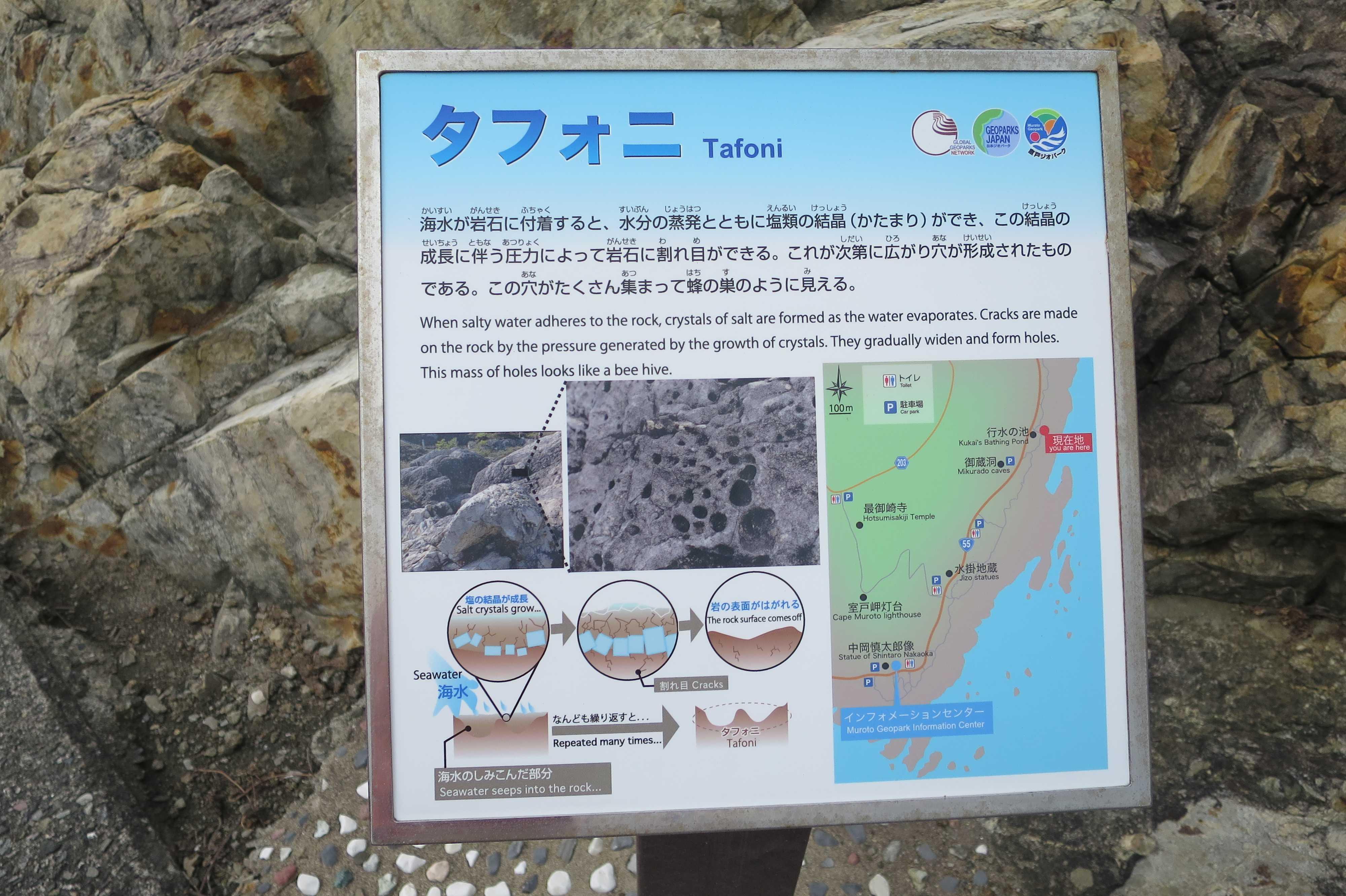 タフォニ Tafoni - 室戸岬 乱礁遊歩道