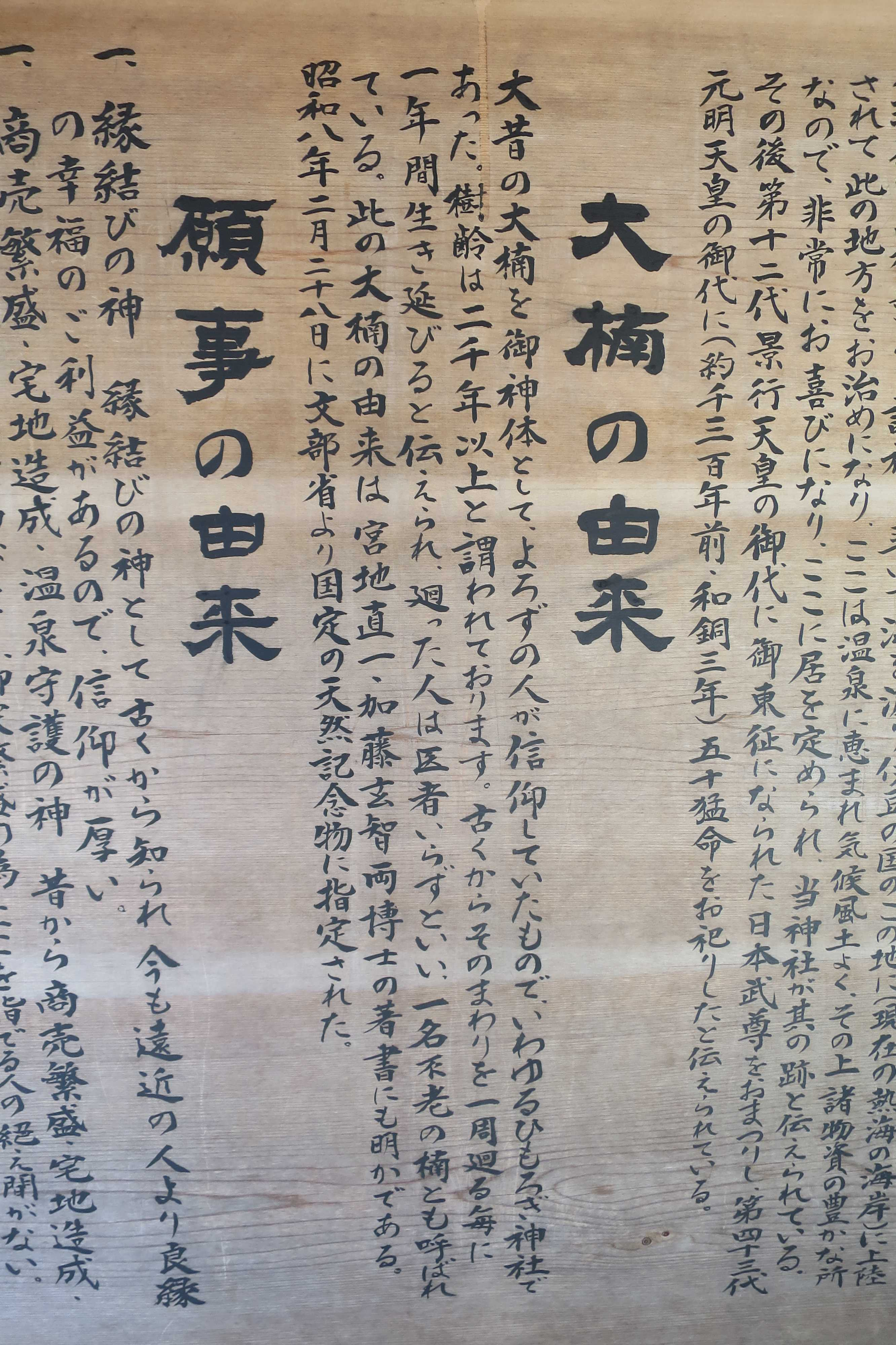来宮神社 - 大樟の由来