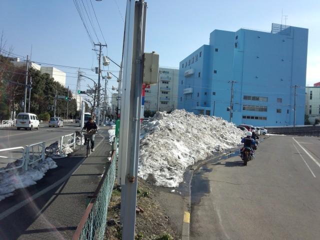 八王子中央自動車学校の残雪