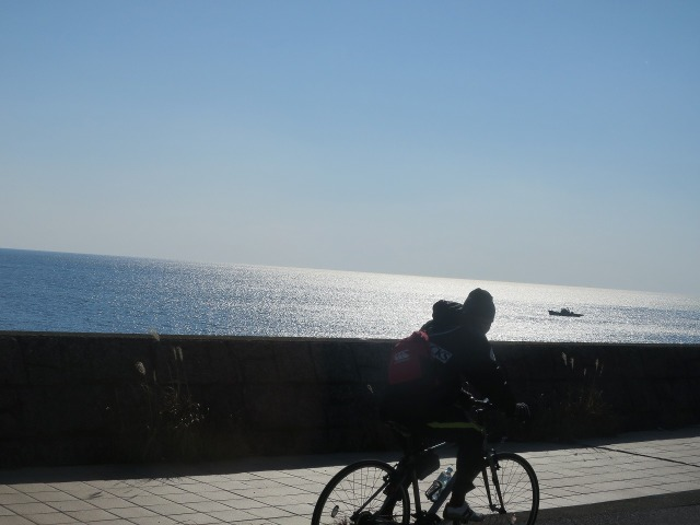 土佐(高知)の光る海
