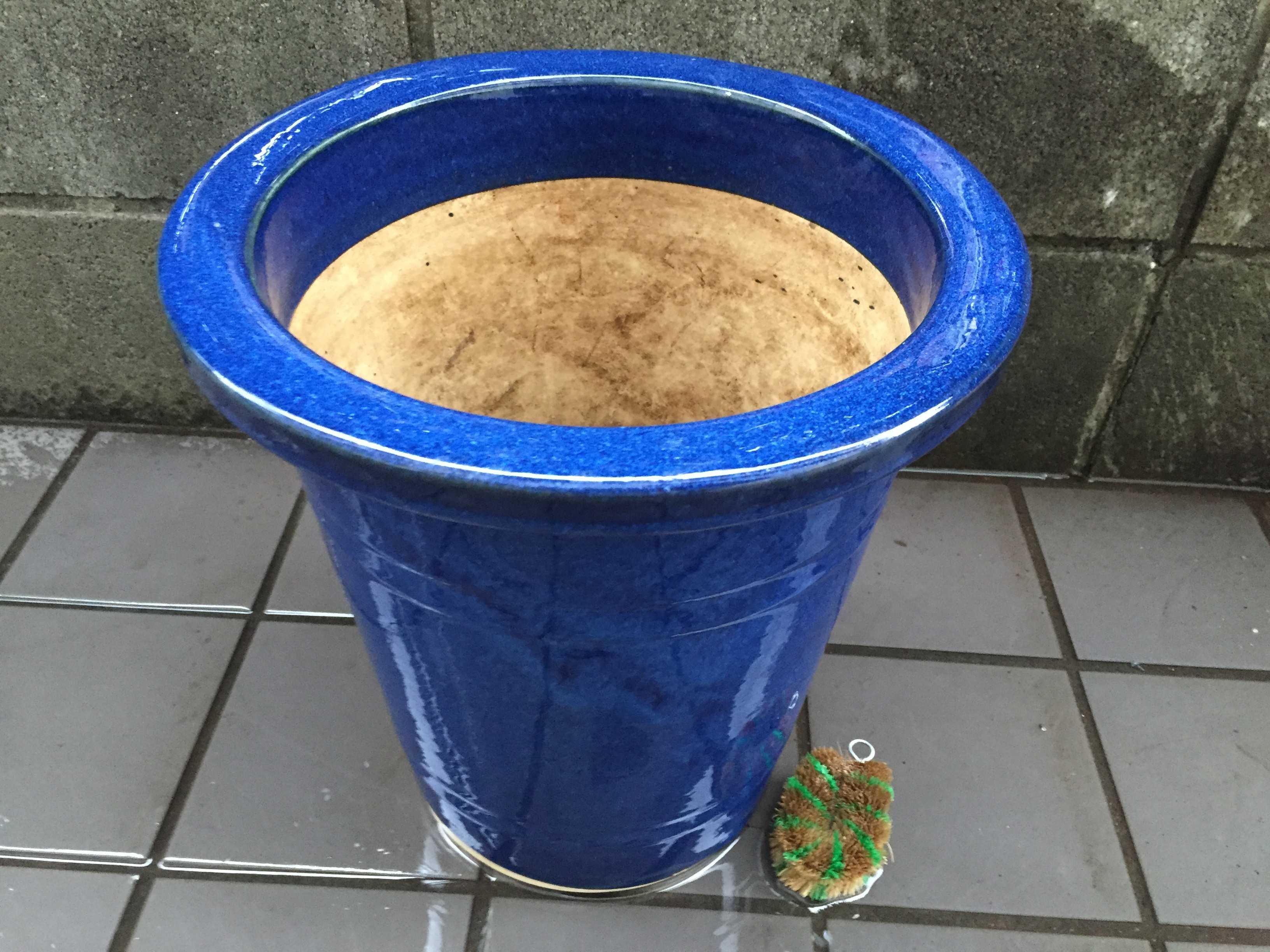 青い植木鉢 - 化粧鉢(瀬戸鉢)