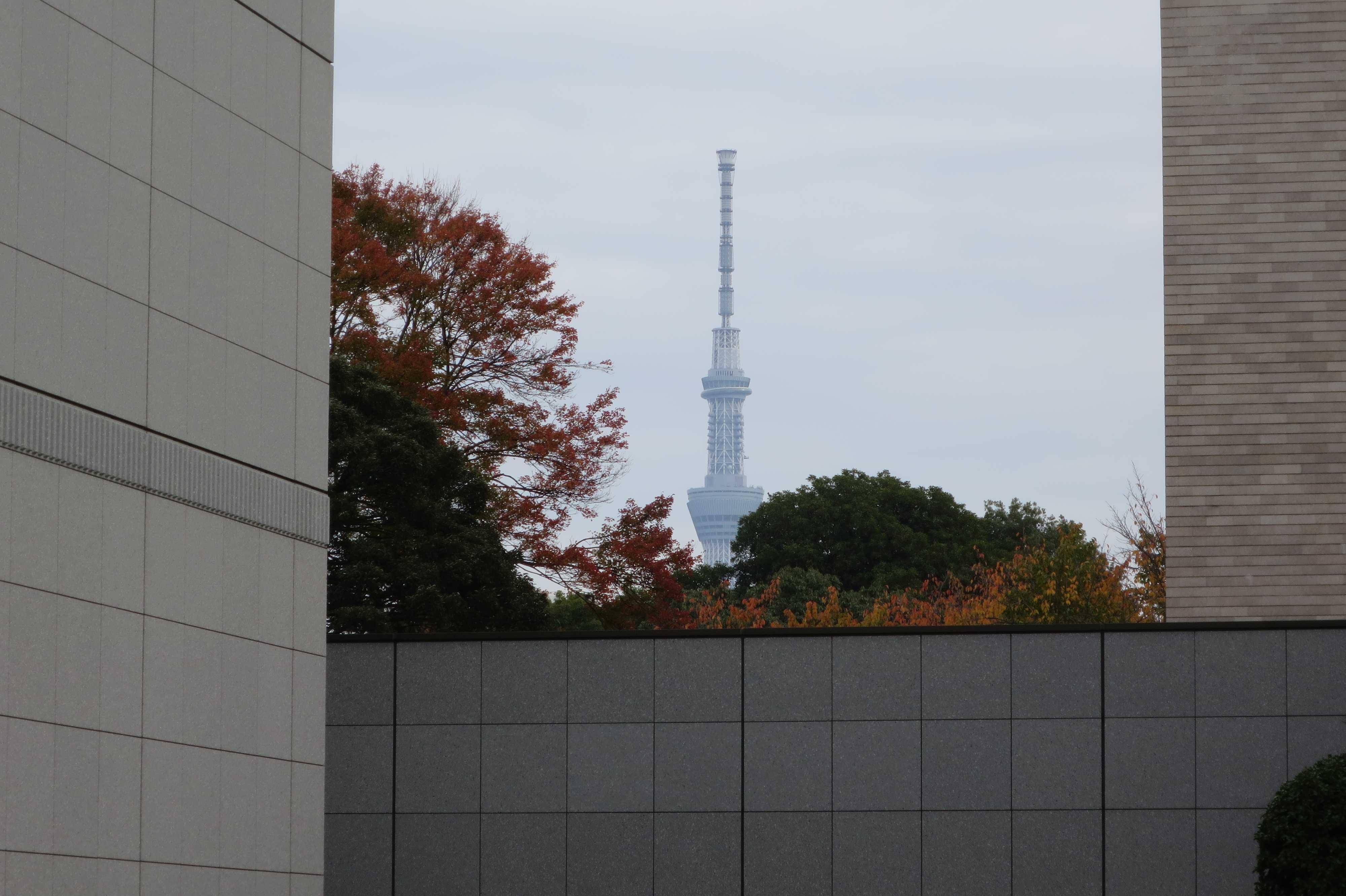 東京国立博物館から見えた東京スカイツリー