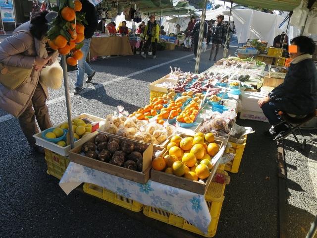 高知の日曜市の柑橘類