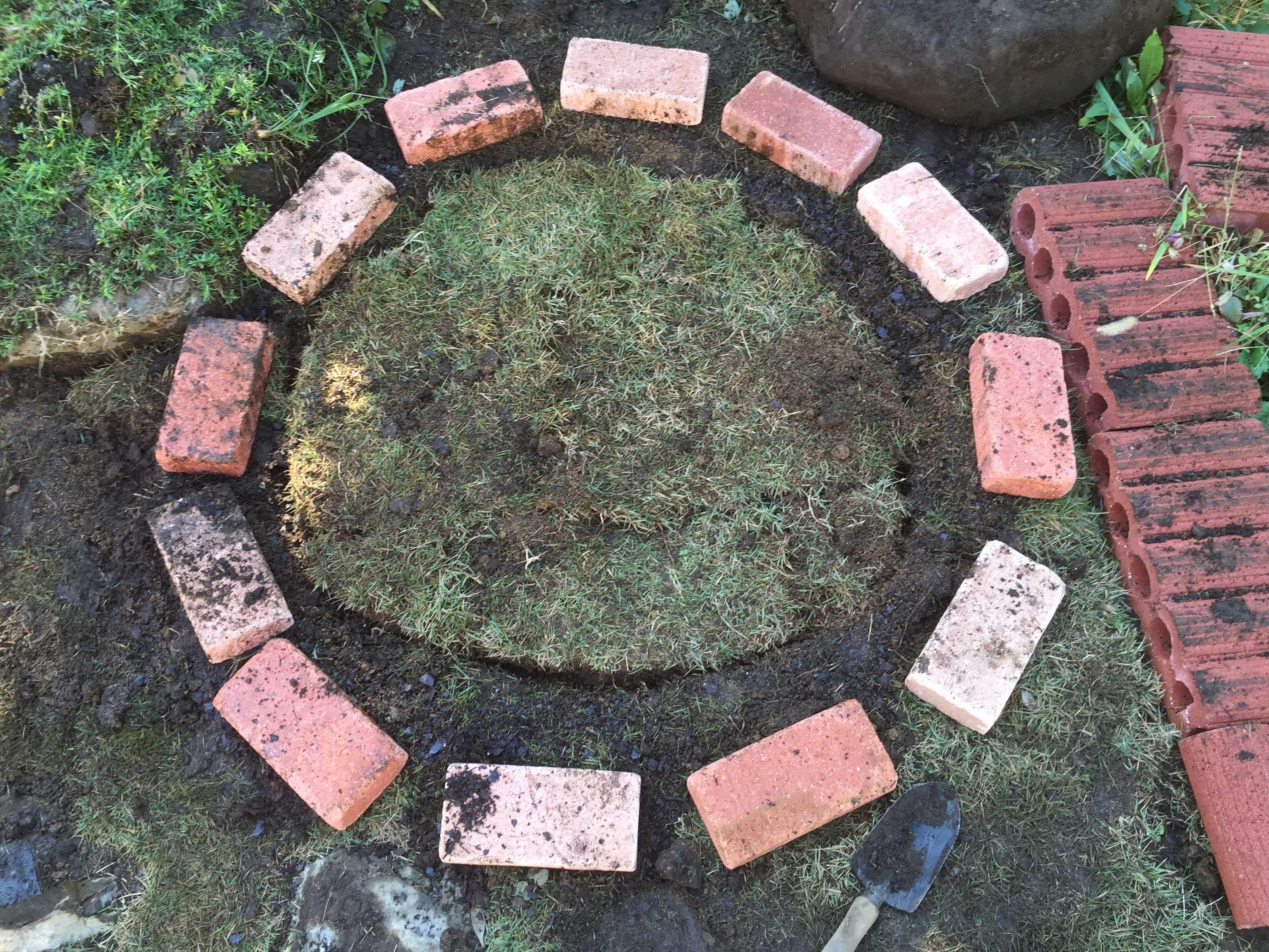 切り取った芝生のはめ込み - 水仙の球根の植え方
