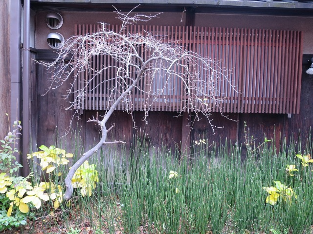 京都・石塀小路の出格子