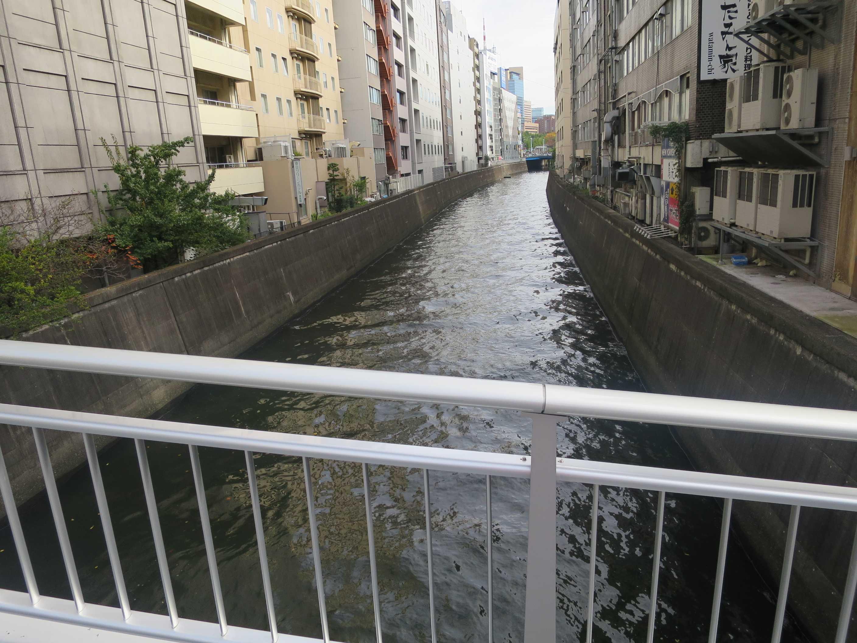 後楽園の神田川