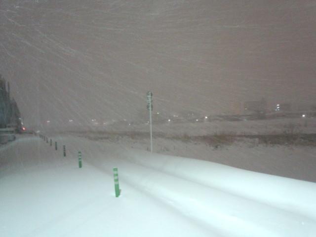 大雪の日の浅川の堤防