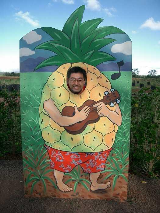 ハワイのパイナップル園の顔ハメ看板
