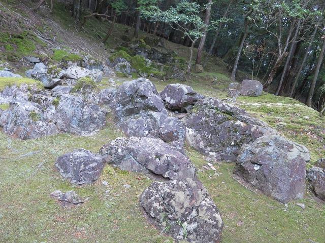 苔寺(西芳寺)の枯山水