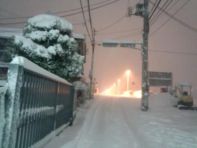 大雪の日の暁橋(東京都八王子市)