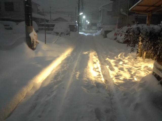 車のヘッドライトに照らされてオレンジ色に光る大雪