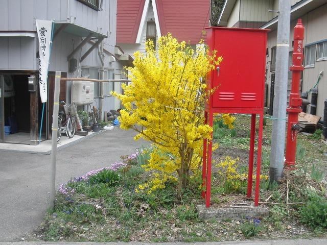 早春の檜枝岐村