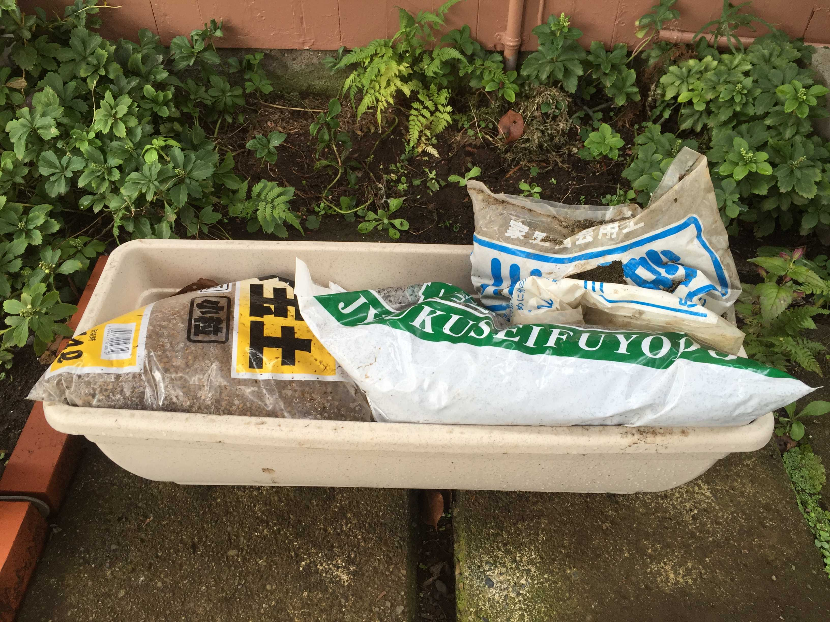 ヤマユリの種子繁殖/実生 - 赤玉土(小粒): 腐葉土 : 川砂 を 4:4:2の割合で配合した配合土