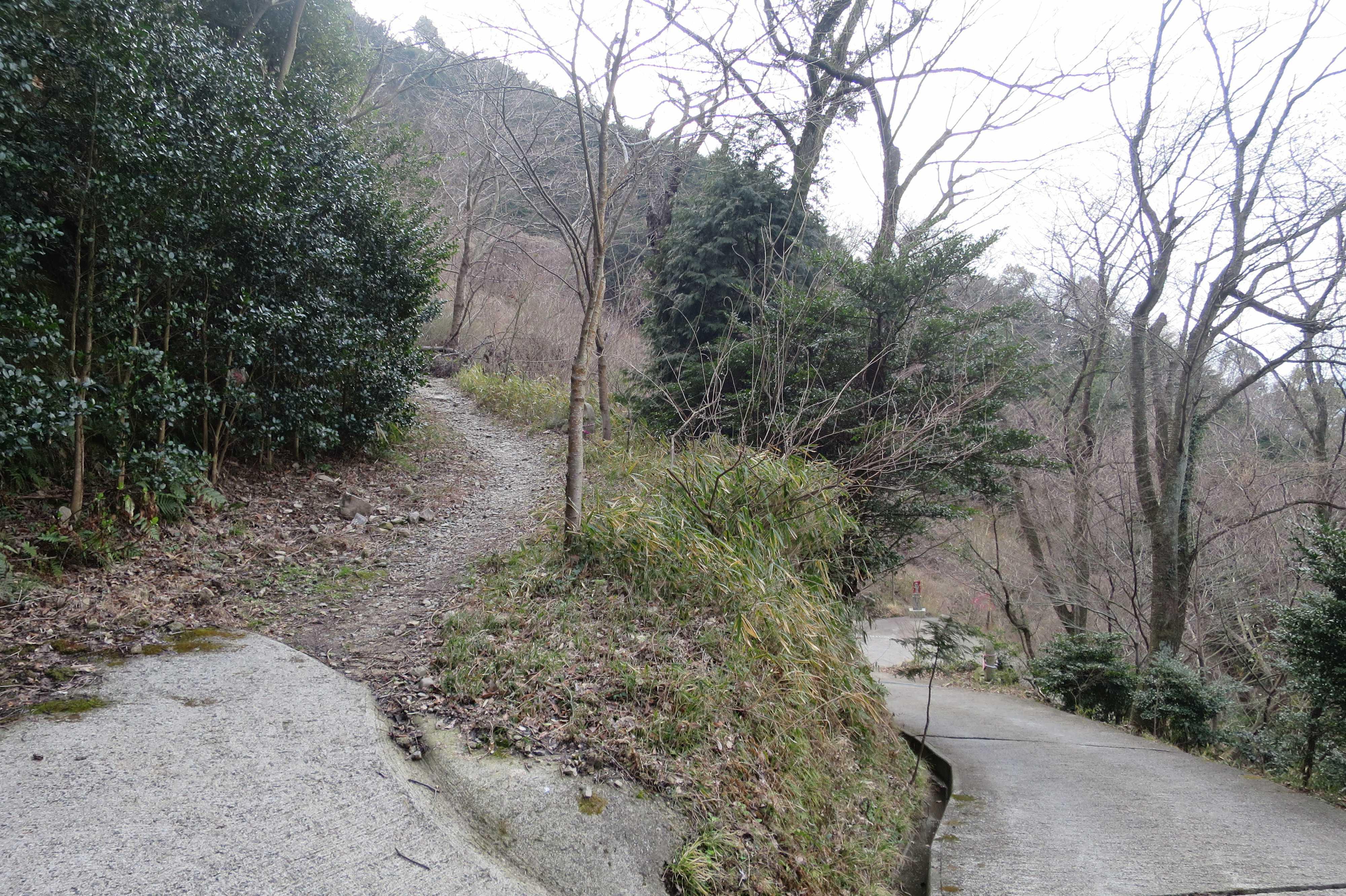 参拝道のヘアピンカーブ - 奥の院捨身ヶ嶽禅定