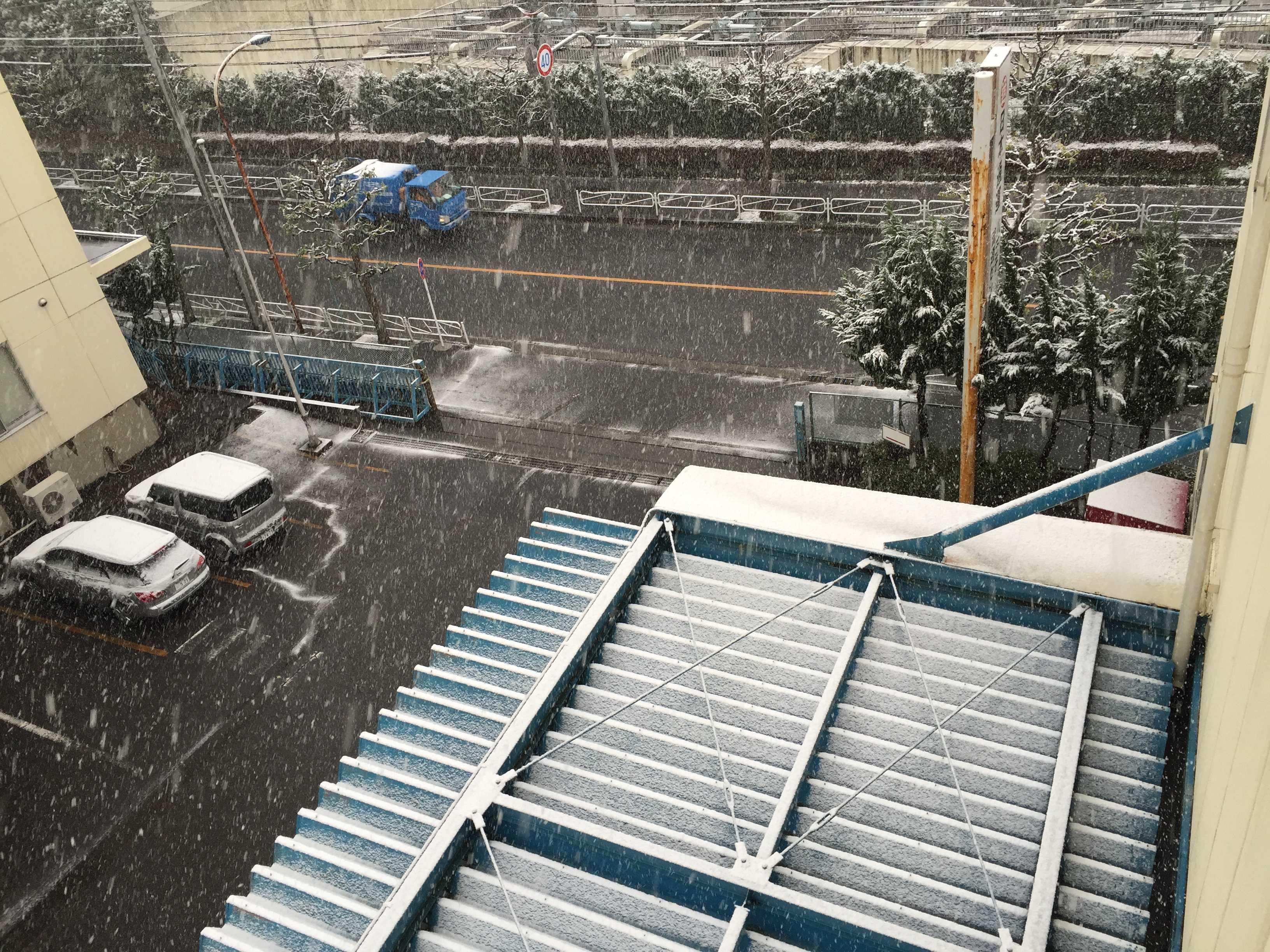 11月に降る雪(東京都八王子市)
