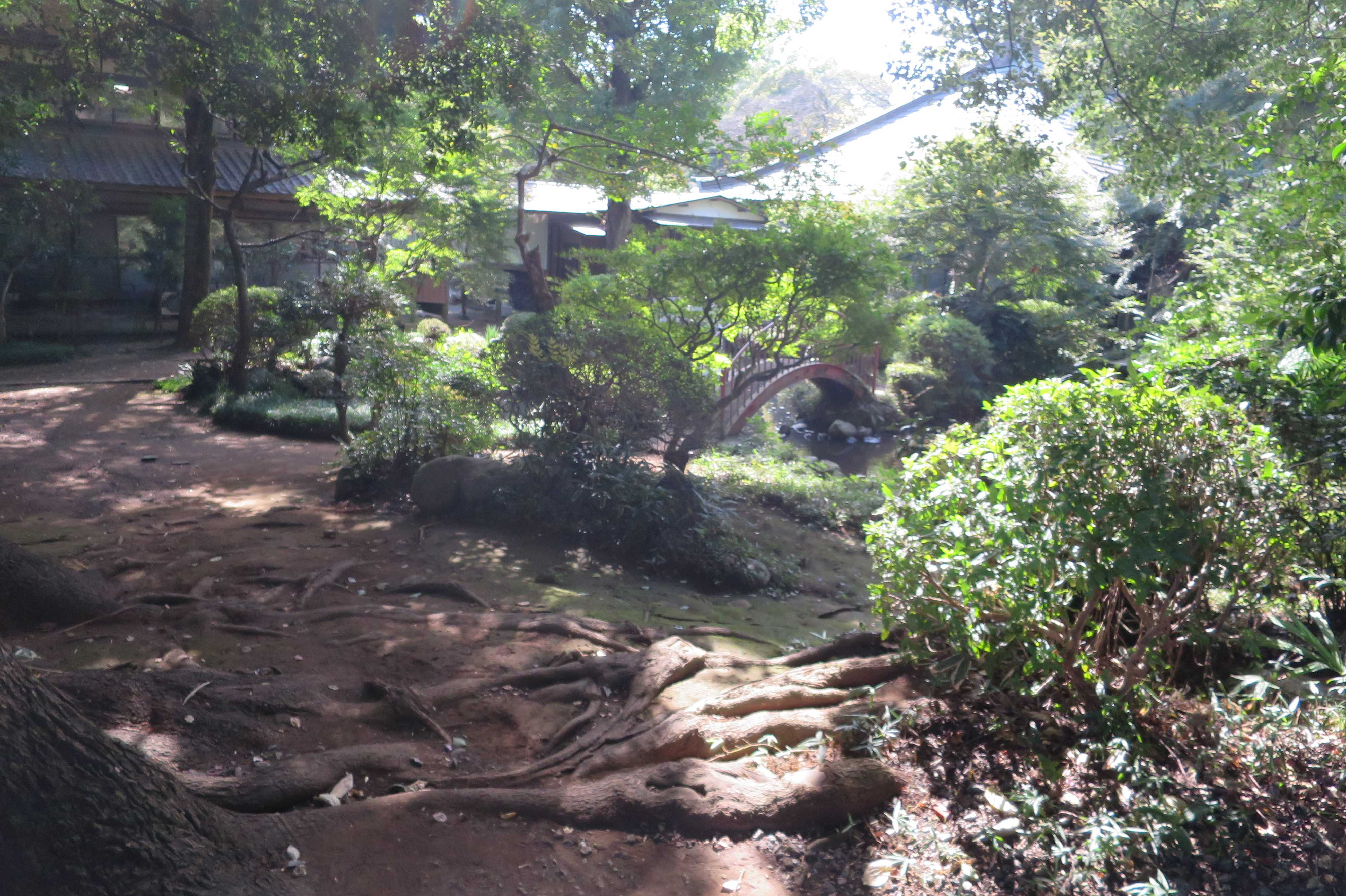 当麻山無量光寺の境内