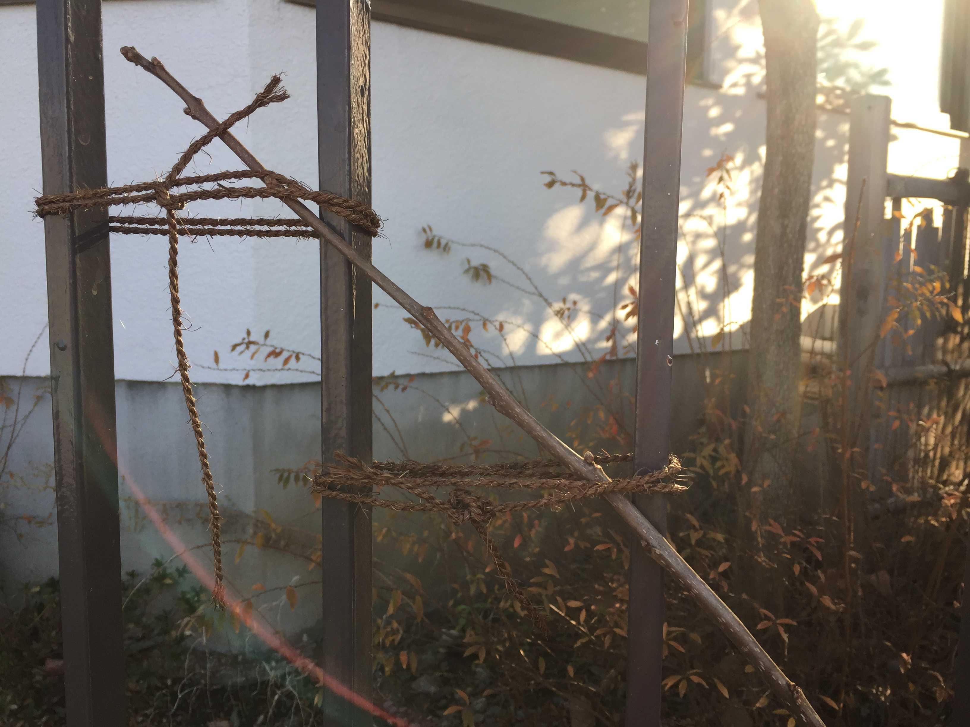 「富有柿」の超低樹高一文字仕立て