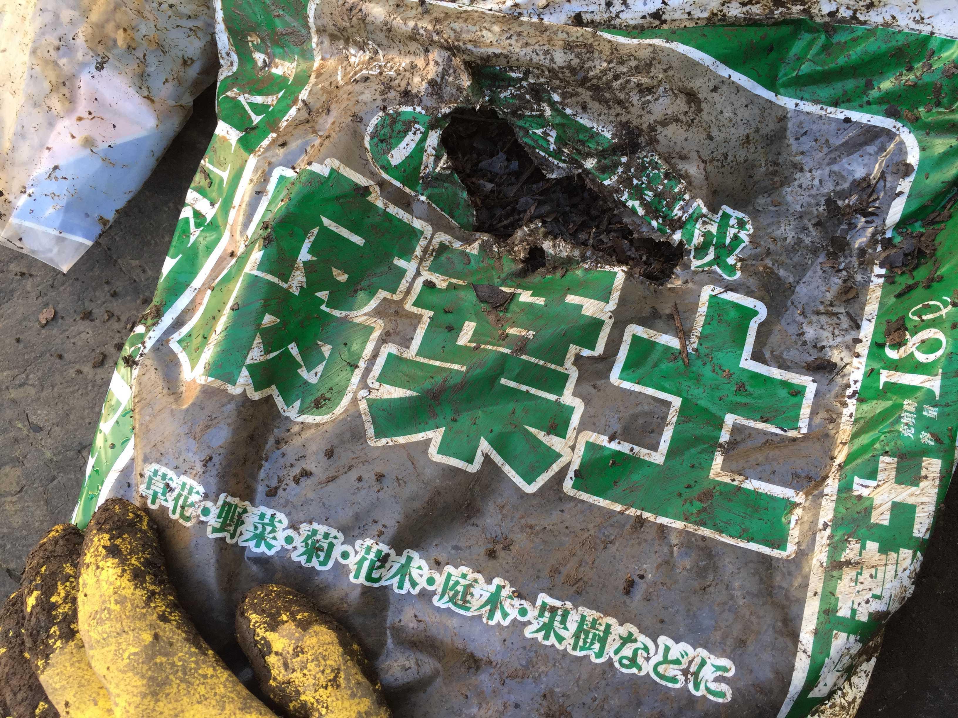 サルスベリ夏祭り(ペパーミントレース)用の腐葉土