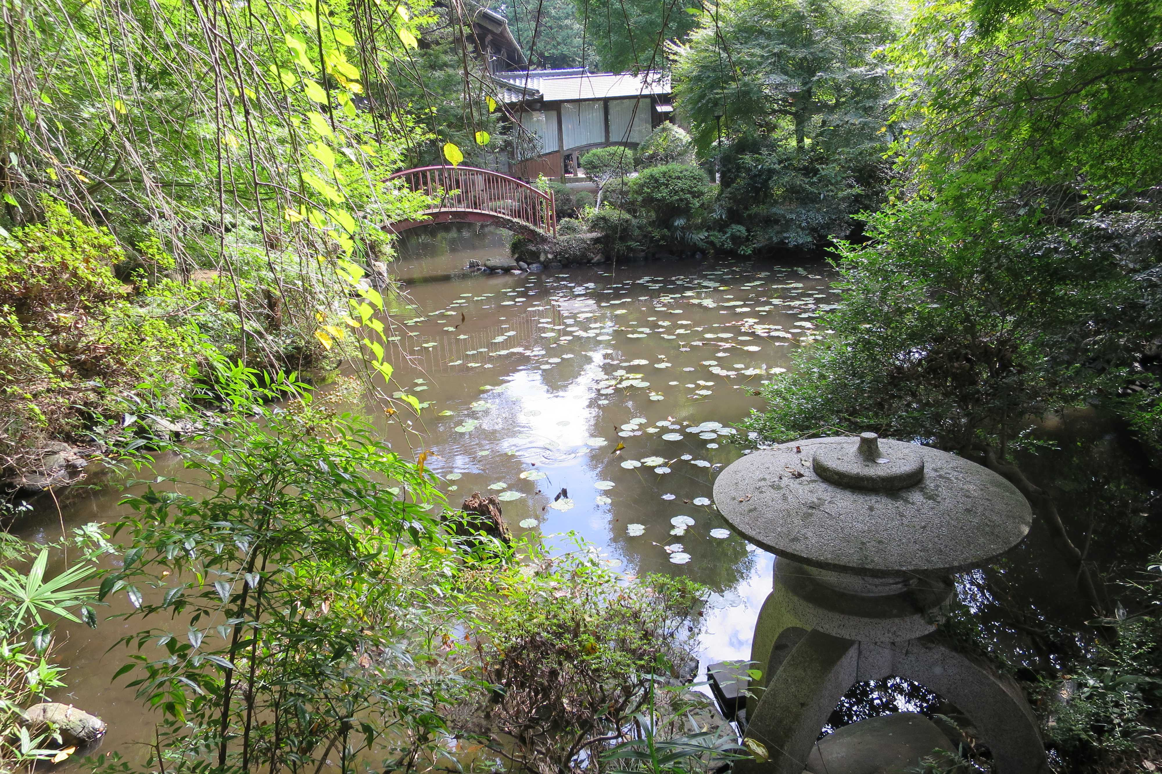 無量光寺 - 御影の池