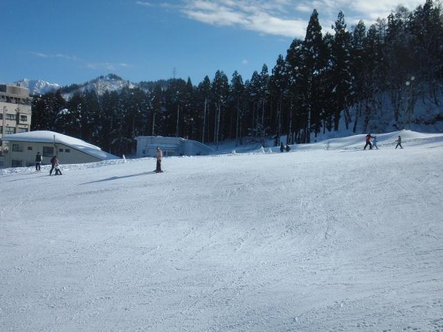 一本杉スキー場 白い雪
