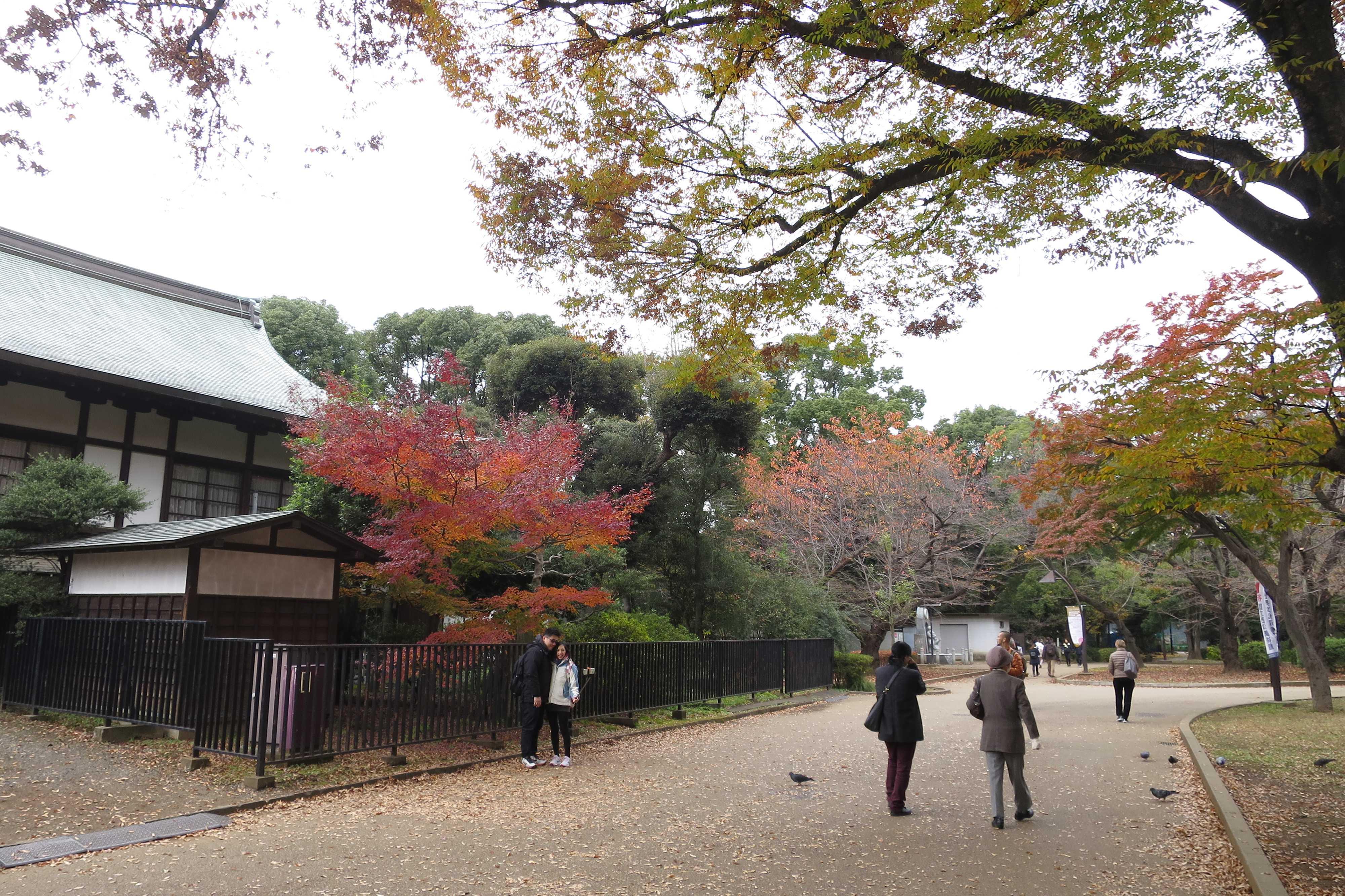 紅葉の上野公園