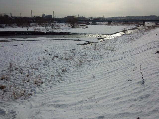 雪解けの浅川河川敷(東京都八王子市)