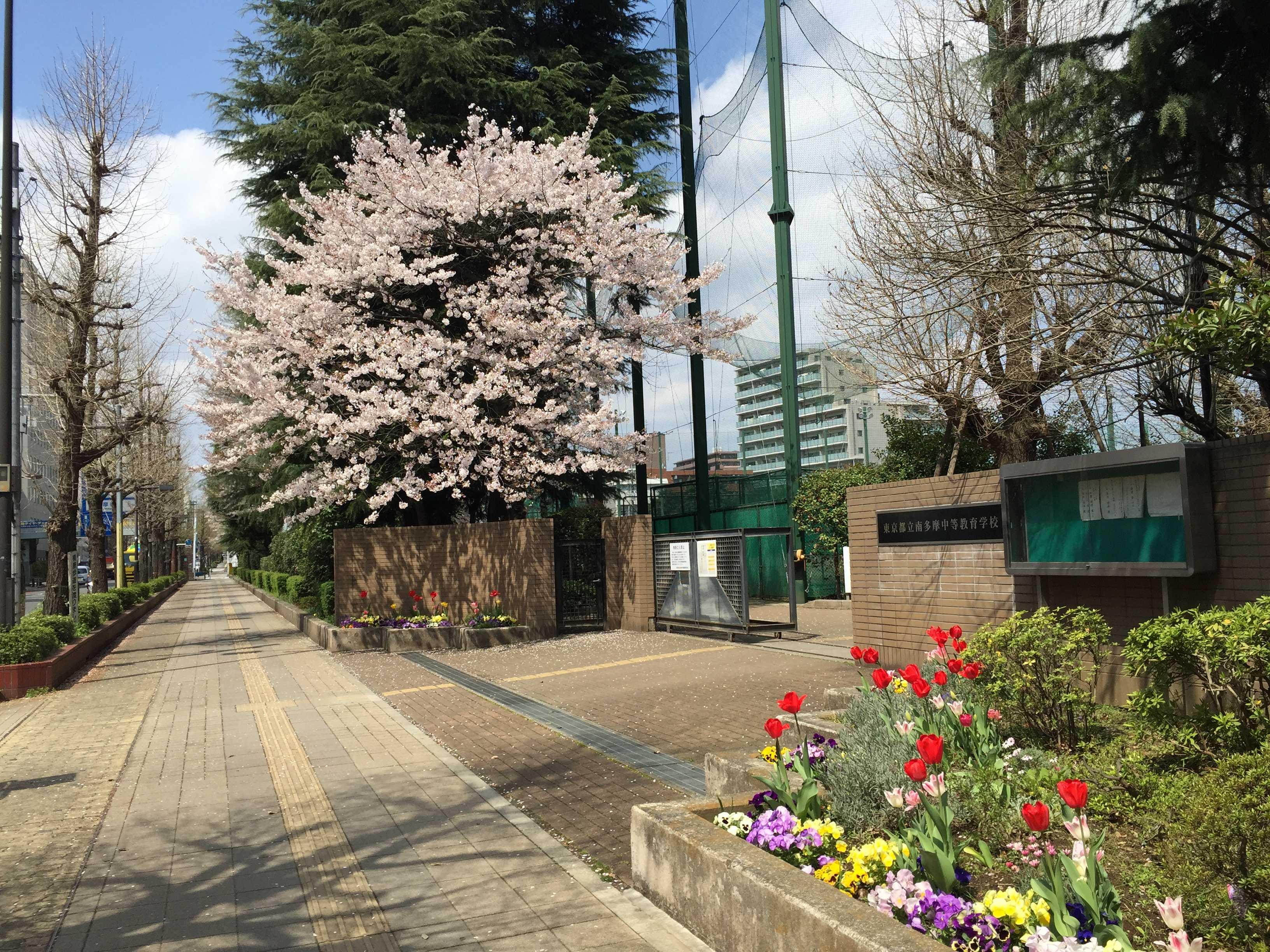 東京都立南多摩中等教育学校 正門