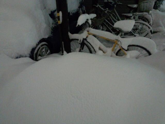大雪と自転車