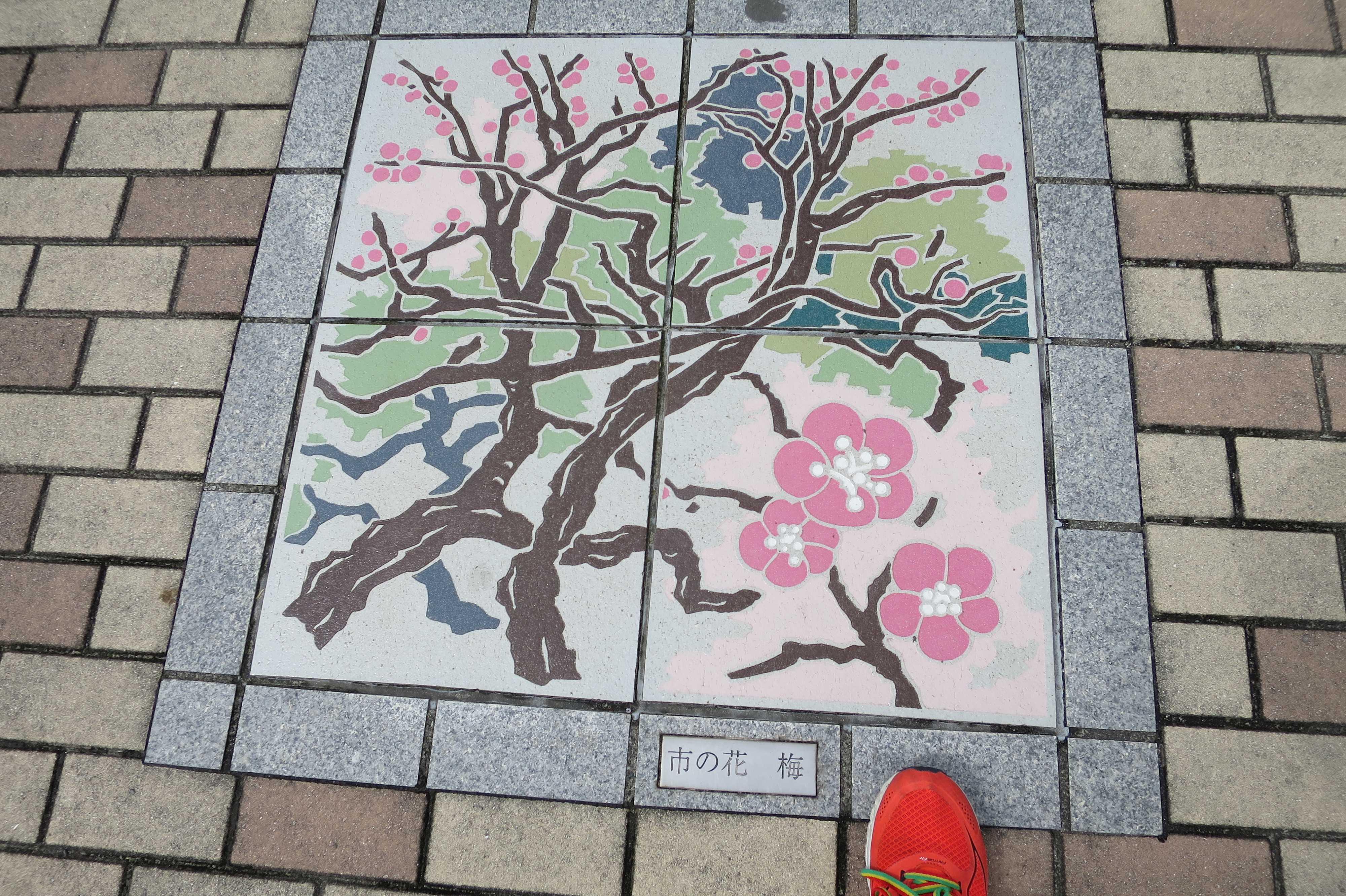 熱海市の花 梅