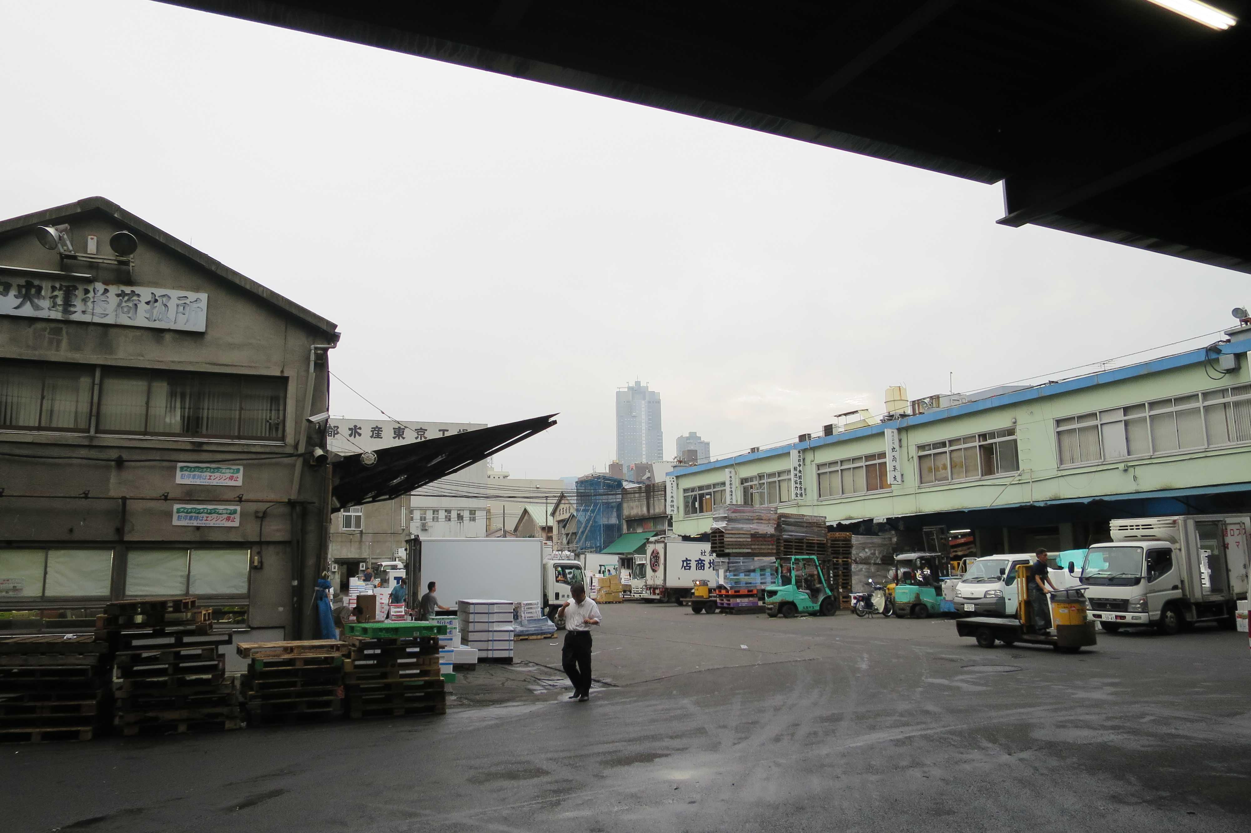 築地市場(場内) - 朝6時半頃の様子