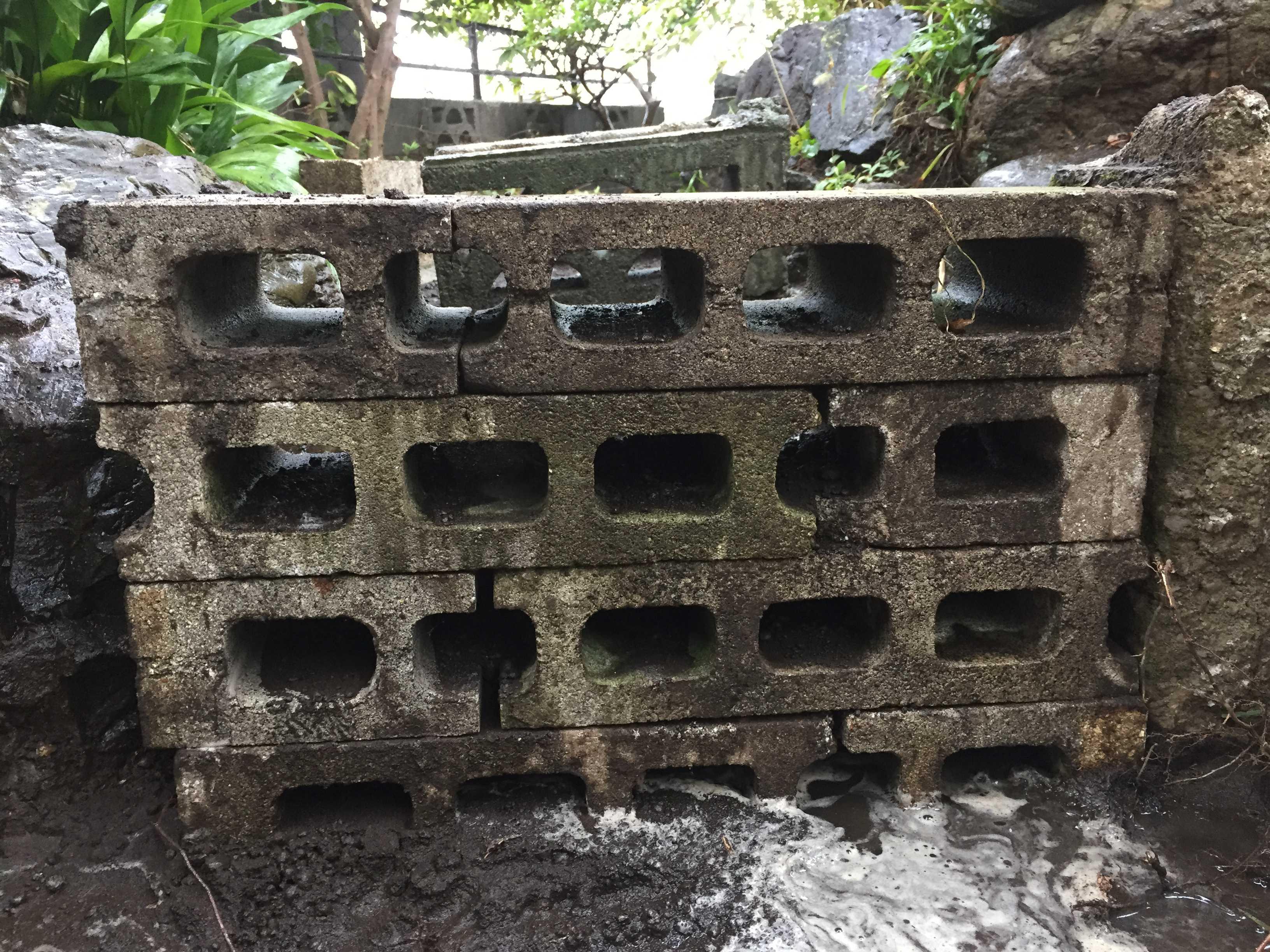 ヤマユリの鱗片定植 - ブロックの積み方