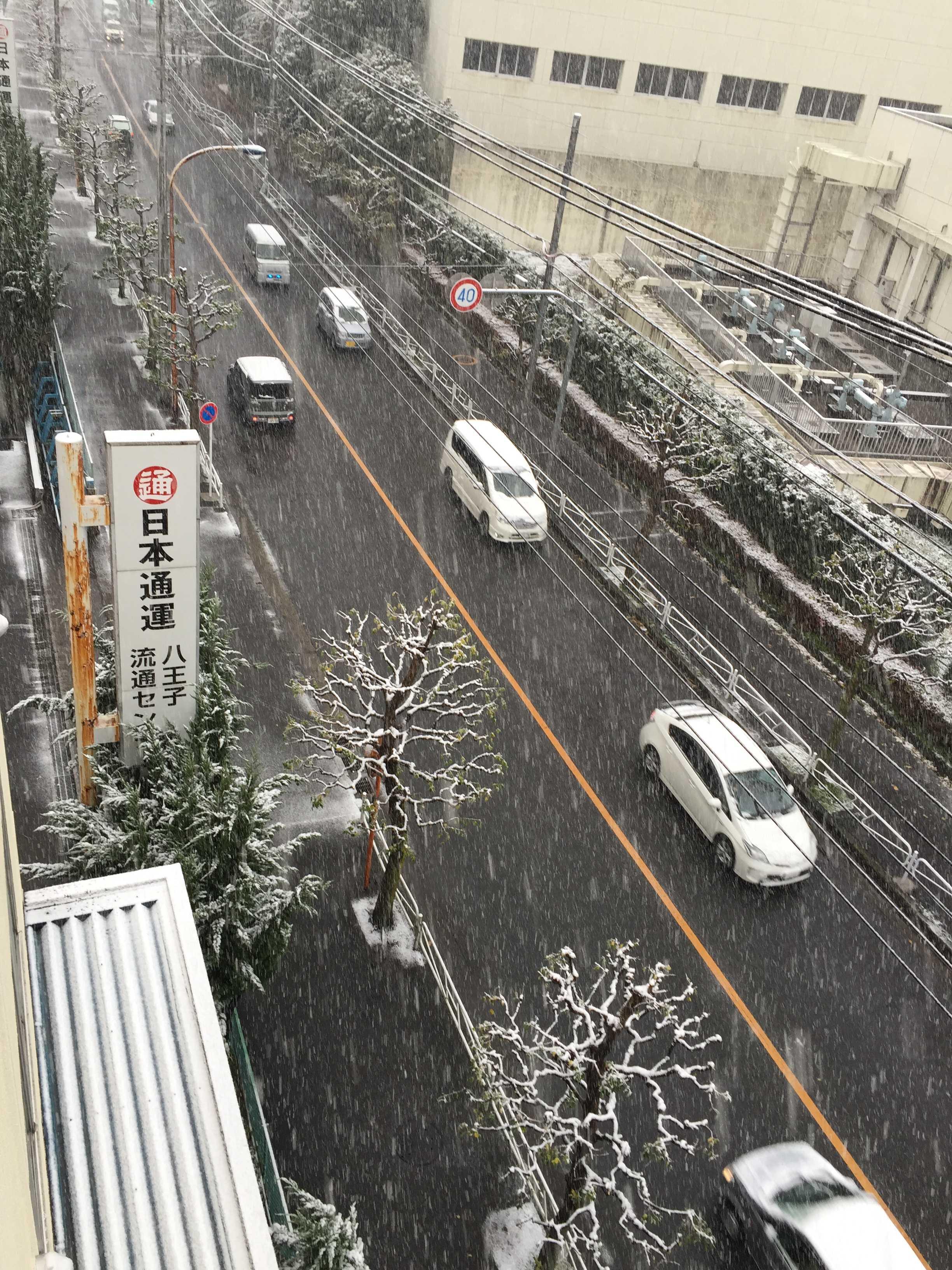 11月に降った雪(東京都八王子市)