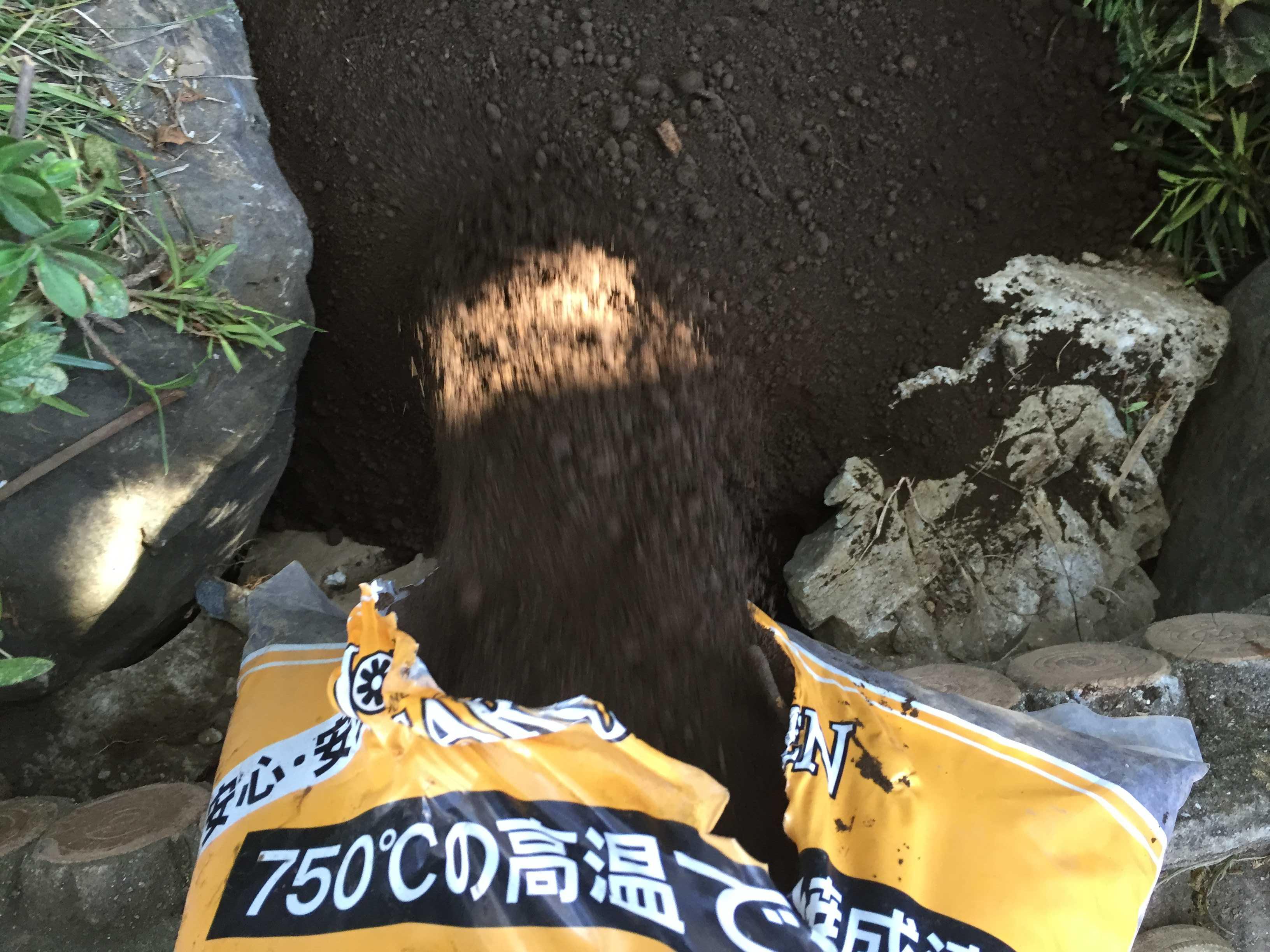 山百合の球根植え付け - 焼成済み焼黒土