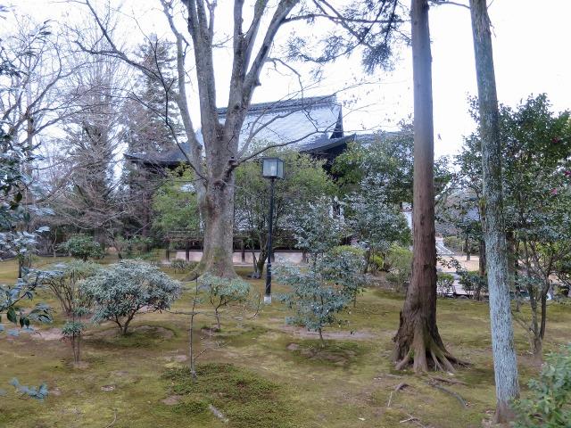 広隆寺の庭園