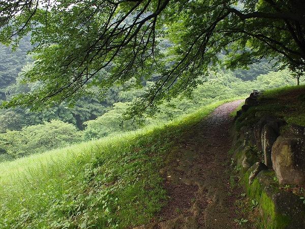 """八王子・長沼公園は公園というより""""山""""です"""