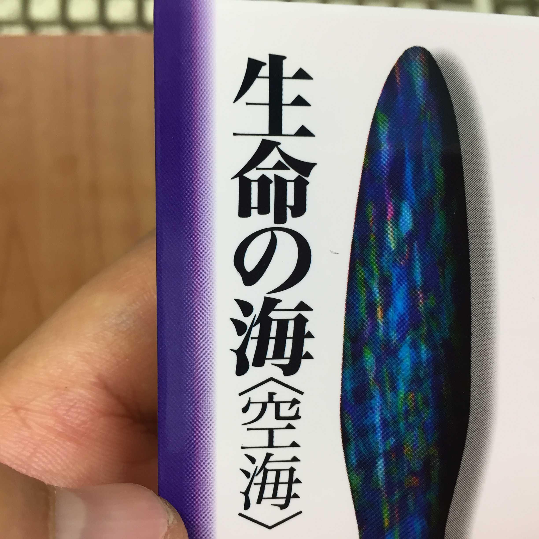 仏教の思想9  生命の海<空海>  宮坂宥勝  梅原猛  角川ソフィア文庫