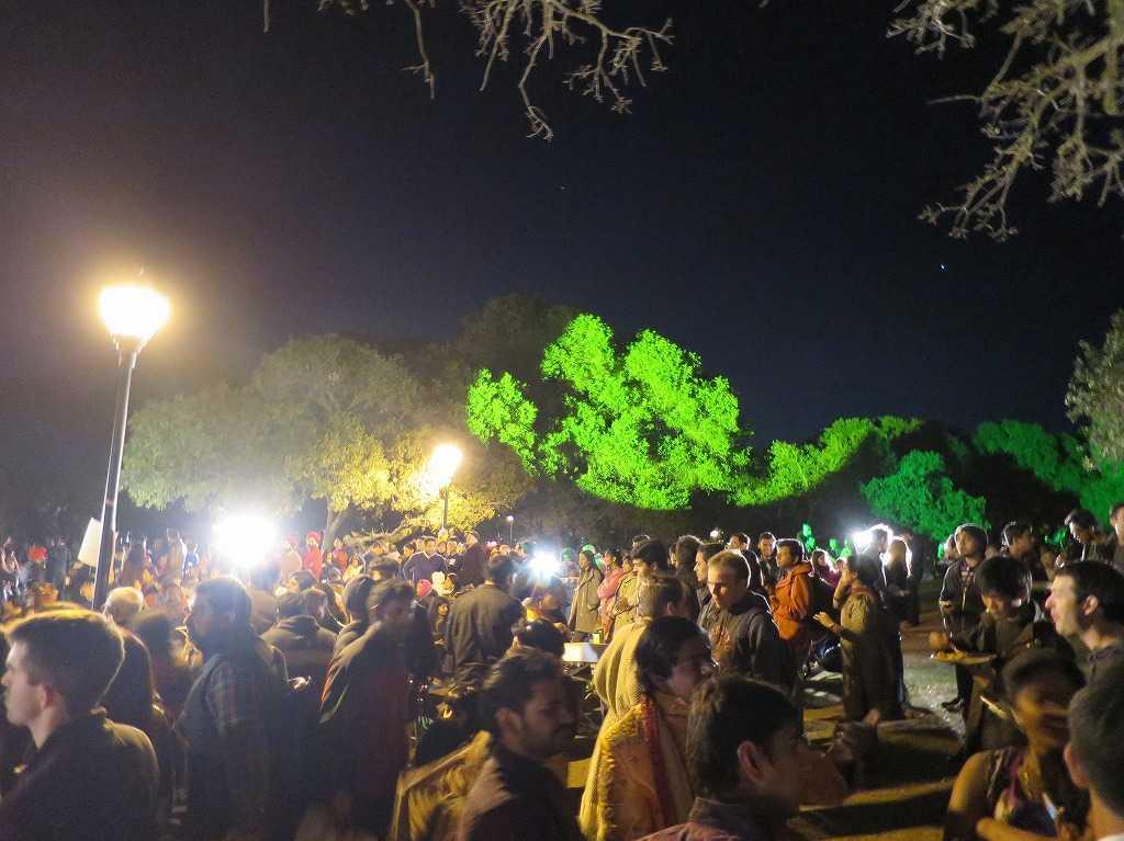 スタンフォード大学 - ライトアップされた木々
