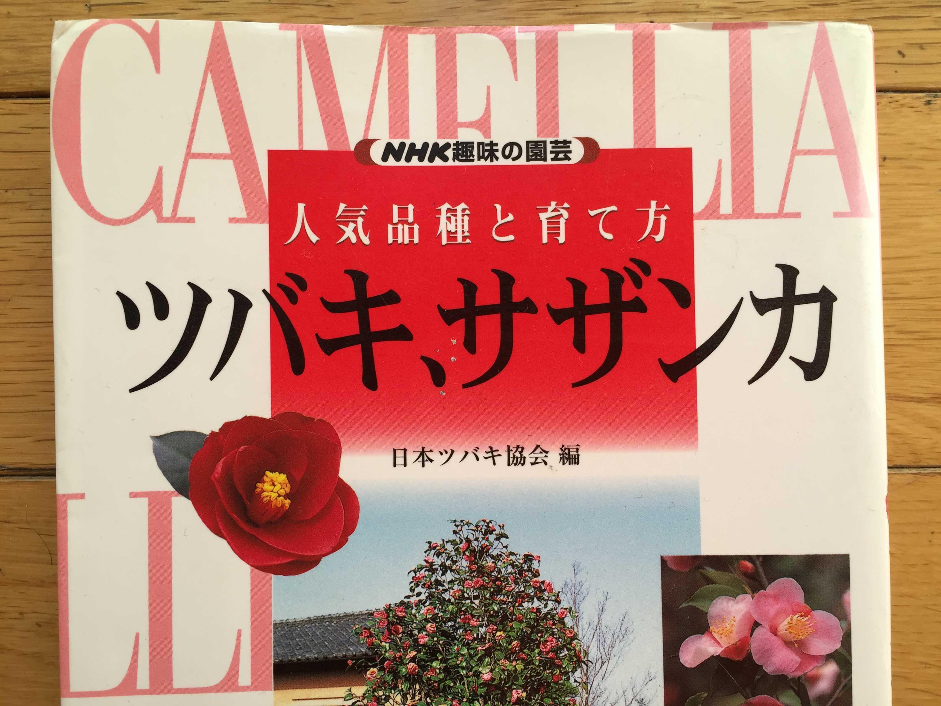 NHK趣味の園芸 ツバキ、サザンカ