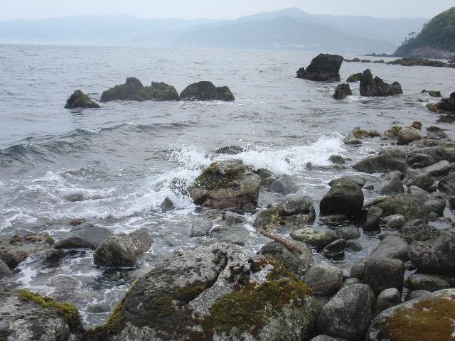 真鶴岬の波