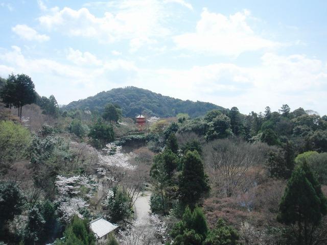 清水寺からの景色