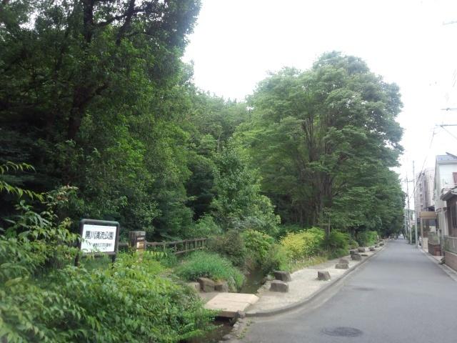 黒川清流公園の緑